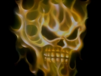 Skull in flames airbrush.