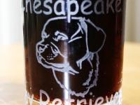 Chesapeake Bay Retriever geëtst op whiskey glazen.