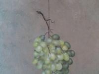 Tros druiven geschilderd op doek. `Tromp l`oeil`.